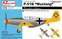 P-51B Mustang Captured - Image 1