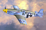 P-51B-15 Bald Eagle - Image 1