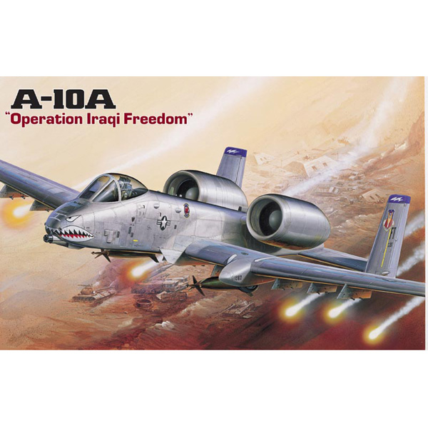 A-10A [OPERATION IRAQ FREEDOM] - Image 1